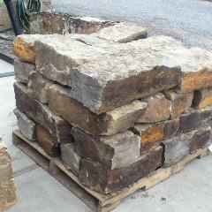 Wild Horse Building Blocks