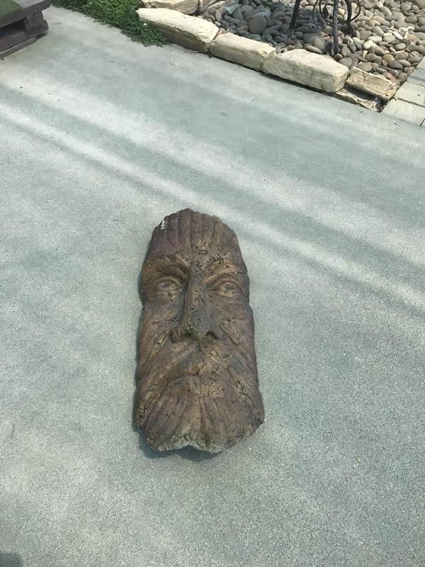 Hanging Tree Man Face