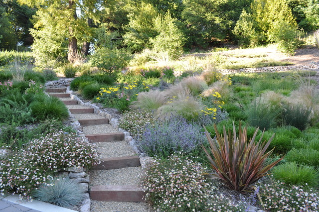 Most New Home Building In California Opting For Xeriscape Landscaping Sutherland Landscape Supplies Chico