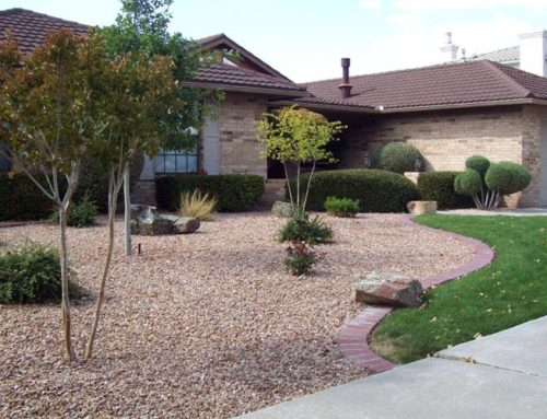 Most new home building in California opting for Xeriscape landscaping