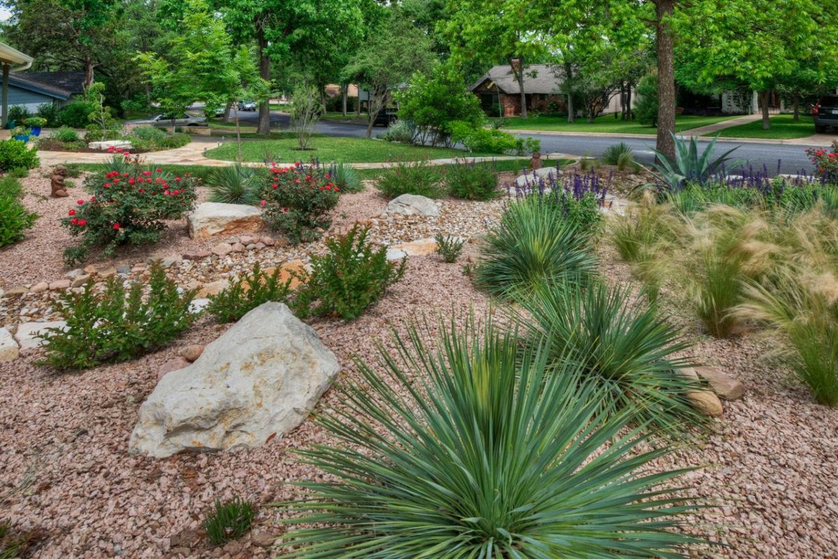 Landscaping Ideas Photo Gallery from Sutherland Landscape ... on Xeriscape Yard Ideas id=61487