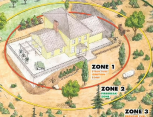 Planning Defensible Space on Your Property