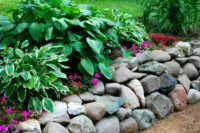Rock wall shade garden with Hostas by Sutherland Landscape