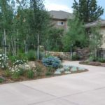 Sutherland Landscape Northern California front yard water saving landscaping