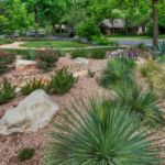 Sutherland Landscape luxurious front yard water saving landscaping xeriscape for Northern California