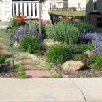 Sutherland Landscaping Xeriscape inspiration photo