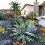 Fire safe contemporary landscape by Sutherland Landscaping in Chico CA