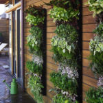 Vertical Garden Ideas for Your Small Yard